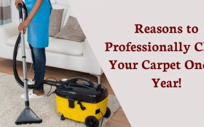 Reasons to Professionally Clean Your Carpet Once a Year!