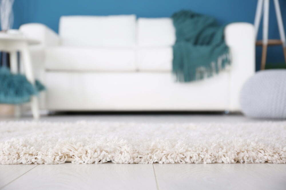 Plush Carpet with Couch in the Background